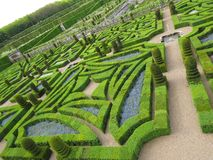 Green labyrinth Stock Image