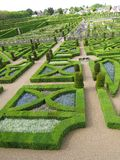 Green labyrinth Stock Photography