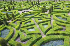 Green labyrinth Royalty Free Stock Photo