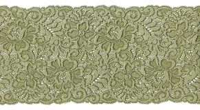 Green lace royalty free stock image