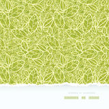 Green lace leaves horizontal seamless pattern Royalty Free Stock Images