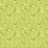 Green lace leaves seamless pattern background Stock Photography