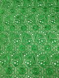 Creen lace texture background Royalty Free Stock Images