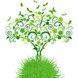 Green lace tree with butterflies Stock Photo