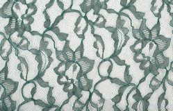 Green Lace on White Spandex Stock Image