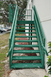 Green ladder Stock Photo