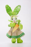 Green lady bunny Stock Images