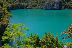 Green Lagoon Royalty Free Stock Image