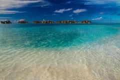Green lagoon beach in Maldives Royalty Free Stock Photos