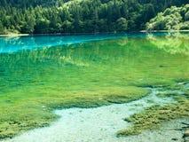 Green Lake Royalty Free Stock Photography