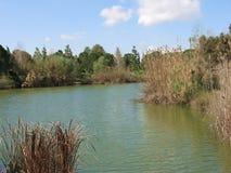 Green Lake. A small lake in Nicosia, Cyprus Stock Photos