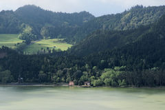Green lake of furnas Sao Miguel, The Azores Islands, Portugal. Green lake in Furnas from the island of Azores in Portugal royalty free stock photo