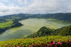 Green lake of furnas Sao Miguel, The Azores Islands, Portugal Royalty Free Stock Photography