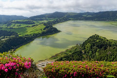 Green lake of furnas Sao Miguel, The Azores Islands, Portugal Royalty Free Stock Image