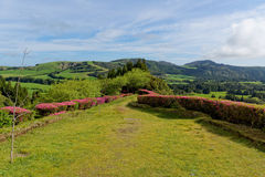 Green lake of furnas Sao Miguel, The Azores Islands, Portugal Royalty Free Stock Photos