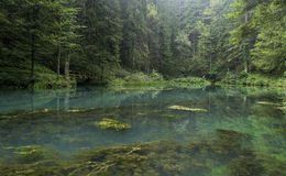 Green Lake, Gorski Kotar, croatia Royalty Free Stock Images