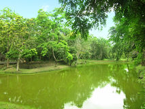 Green lake in green forest. Landscape of green lake in green forest at Si Satchanalai Historical Park, Sukhothai province, one of Thailand& x27;s world heritage stock images