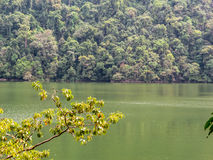 Free Green Lake In Langkawi, Malaysia Stock Photography - 71736082