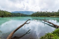 Green lake. In Indonesia is very wonderful Royalty Free Stock Photos