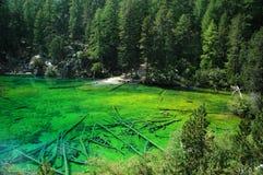 Green Lake - Italy. Crystal lake in the north Italy (Bardonecchia - Piedmont Royalty Free Stock Photos