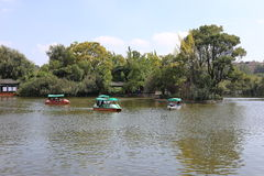 The Green Lake in Kunming, China Royalty Free Stock Photo