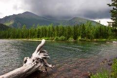 Green lake, log and mountains. Royalty Free Stock Photos