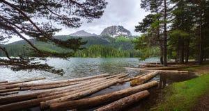 Green lake in Montenegro royalty free stock photo