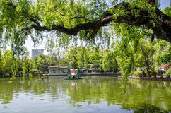 Green Lake Park also known as Cui Hu Park is one of the most beautiful parks in Kunming city. Royalty Free Stock Image