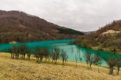 Green lake. Pollution water lake ,geamana,Romania royalty free stock image
