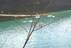 Green lake in the shiny days. Blurred background royalty free stock photo