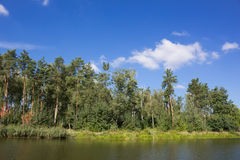 Green lake shore Royalty Free Stock Image