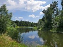Green lake shore Royalty Free Stock Images