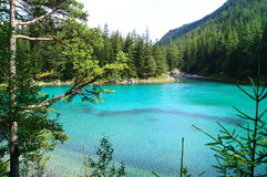 The Green Lake in Tragoess, Austria. Grüner See (Green Lake) is a lake in Styria, Austria near the town of Tragöß. The lake is surrounded by the Hochschwab Royalty Free Stock Photography