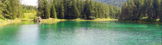 The Green Lake in Tragoess, Austria (panorama). Grüner See (Green Lake) is a lake in Styria, Austria near the town of Tragöß. The lake is surrounded by the Royalty Free Stock Photography