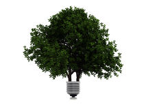 Green lamp. The conceptual image of an ecological electricity Stock Images