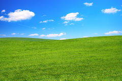 Green Land. Background Of Blue Sky And Green Grass Stock Images