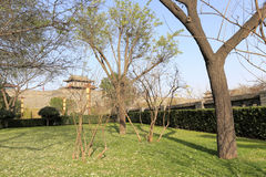 Green land in front of the xian circumvallation in winter. Xian ancient city, shaanxi province, china. xian wall is chinese largest existing and most preserved royalty free stock photography