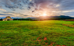 Green Land. Park in Chiangrai North Thailand Stock Photography