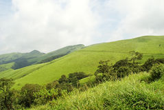 Green landscape. Beautiful breath taking landscape in the hills of Southern India Stock Photos