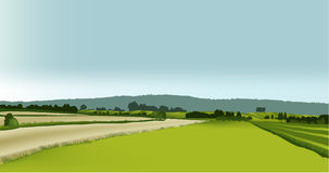 Green landscape. Vector illustration of green spring hills Royalty Free Stock Image