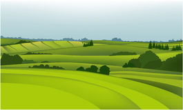 Green landscape. Vector illustration of green spring hills Royalty Free Stock Photography