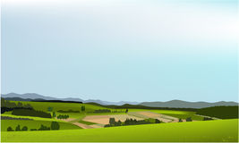 Green landscape. Vector illustration of green spring hills Royalty Free Stock Images
