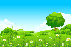 Green landscape Stock Photography