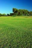 Green landscape Stock Images