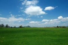 Green landscape. Springtime green landscape royalty free stock photos