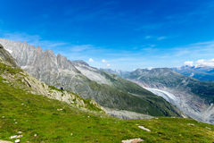 Green landscape in the alps Royalty Free Stock Photo