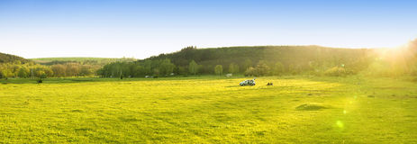 Green landscape and blue sky Stock Photography