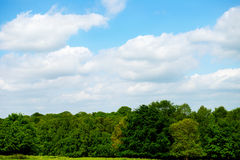 Green Landscape and Blue Sky Stock Photo