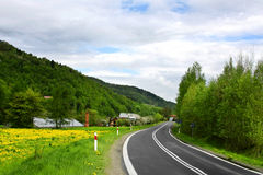 Green landscape - country road Royalty Free Stock Photography