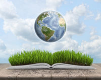 Green landscape covered by grass on an open book with Globe. royalty free illustration